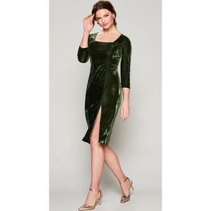 NWT velvet green dress size 0